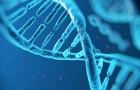 TEXNOLOGIA-ISOCIAL-DNA-TO-APOTHIKEYTIKO-MESO-TOY-MELLONTOS