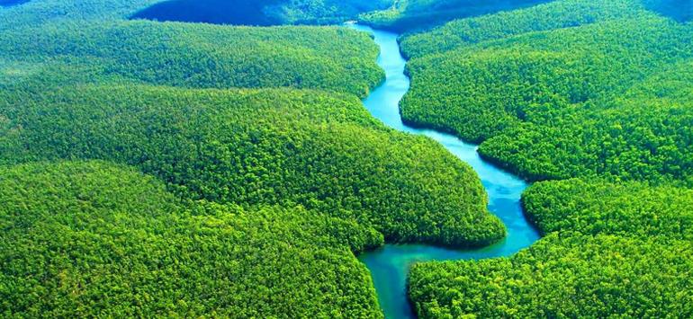 Αποτέλεσμα εικόνας για Αμαζόνιο