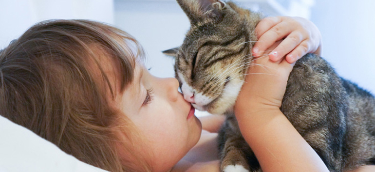 13a7a2100356 7 σημάδια ότι η γάτα σου σε αγαπάει. - Κατερίνα Τσεμπερλίδου