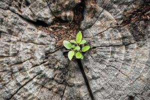 5+1 σκέψεις για ένα νέο ξεκίνημα στη ζωή σου